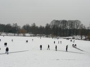 zugefrorener Stadtparksee im Februar 2012